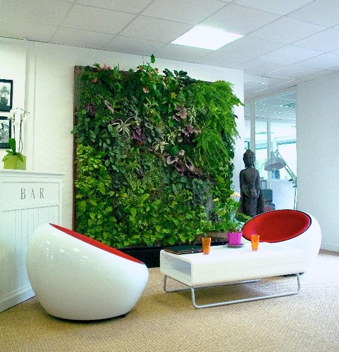 Painel verde: cobrindo paredes com a natureza